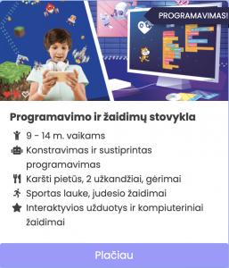 programavimo stovykla